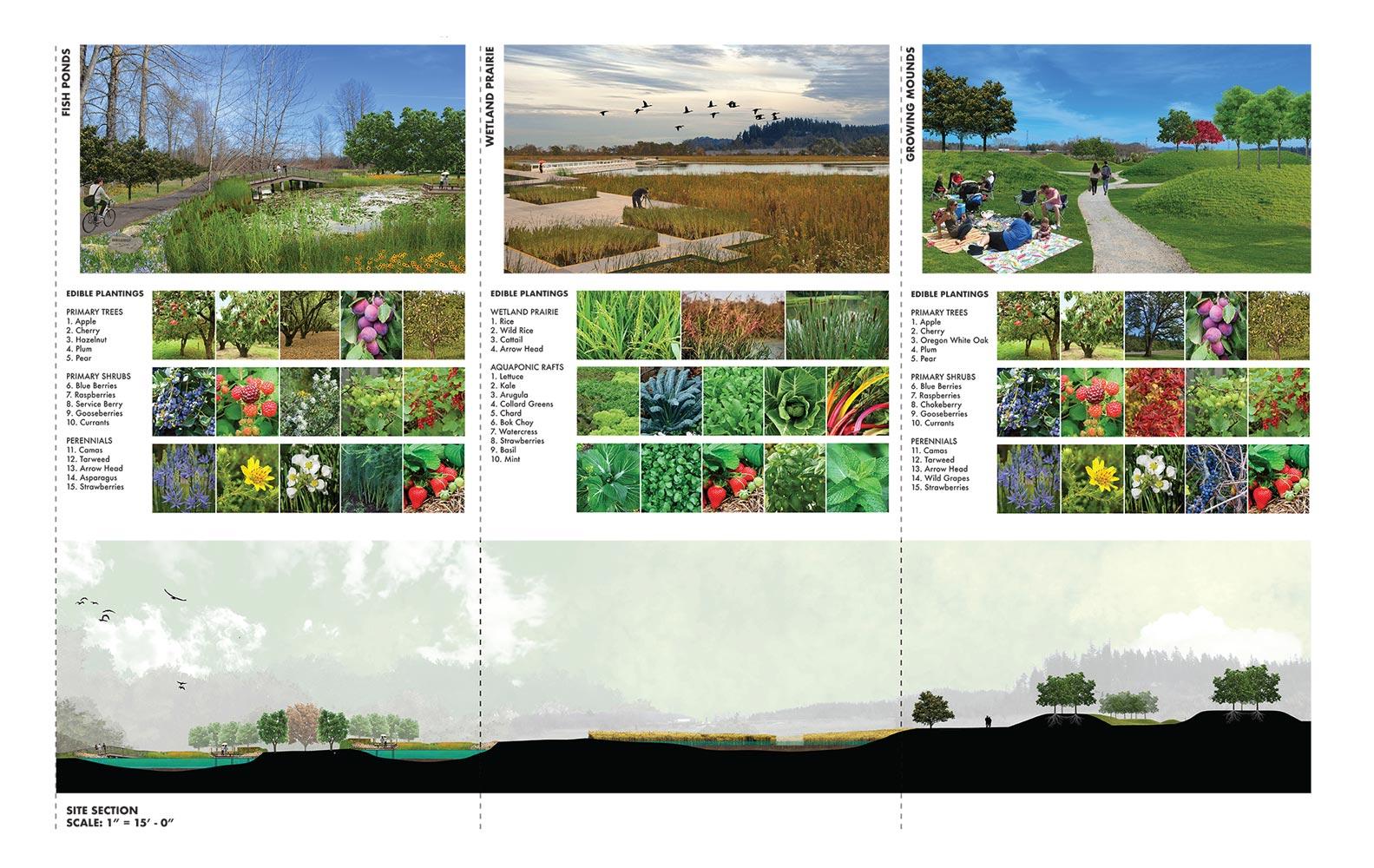 Department Of Landscape Architecture School Of Architecture Environment