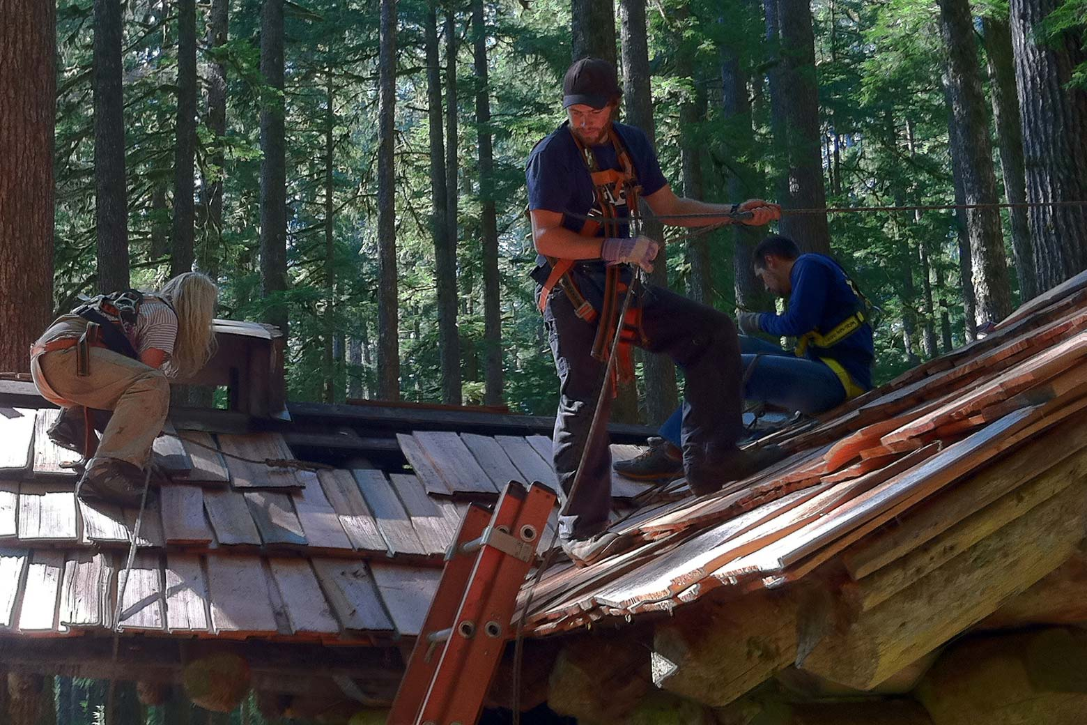 students work on roof of log building at the Pacific Northwest Field School