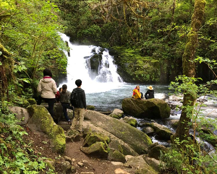 students on hike at Sweet Creek Falls